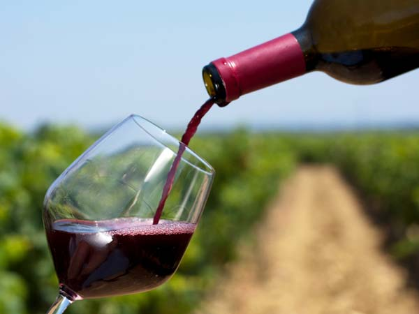 stock-wine-photo-600